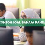Contoh Soal Bahasa Panda UTBK