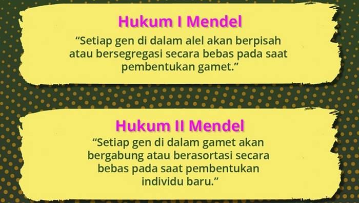 Segregasi Mendel I dan II