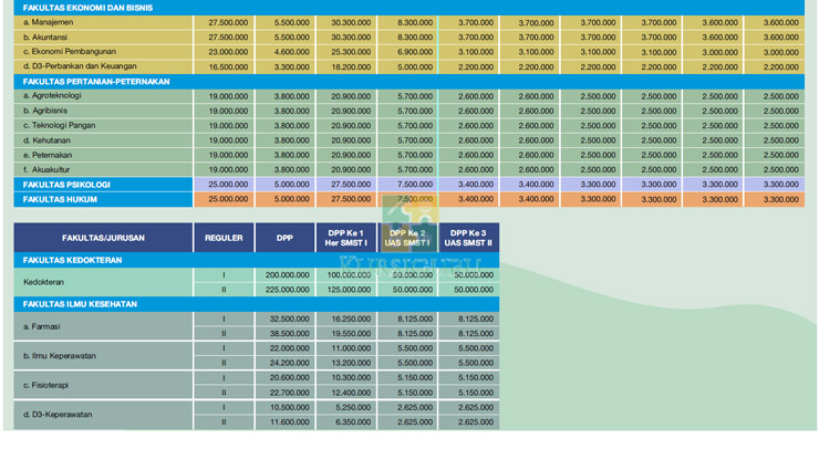 Rincian Biaya Kuliah DPP UMM Malang 2